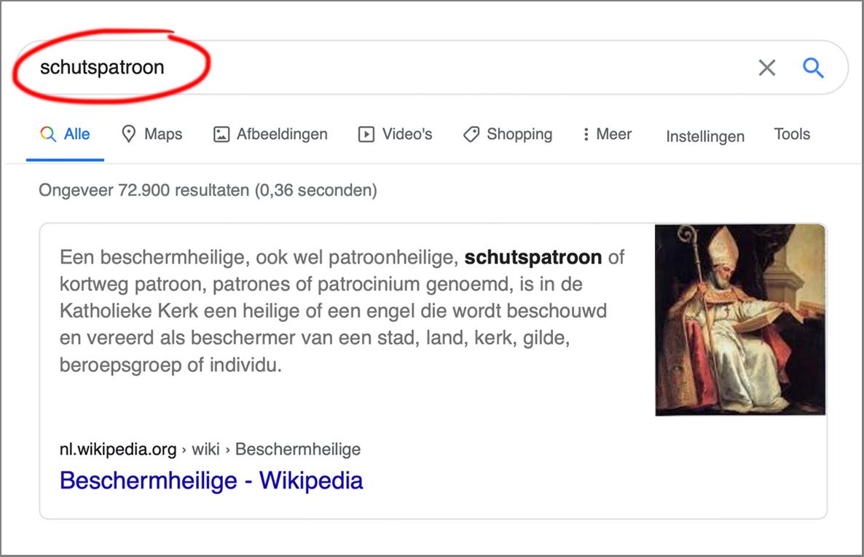 oorspronkelijke betekenis Schutspatroon volgens Wikipedia